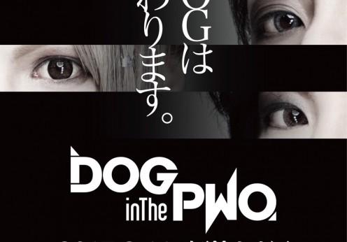 dog-inthepwo-20170107