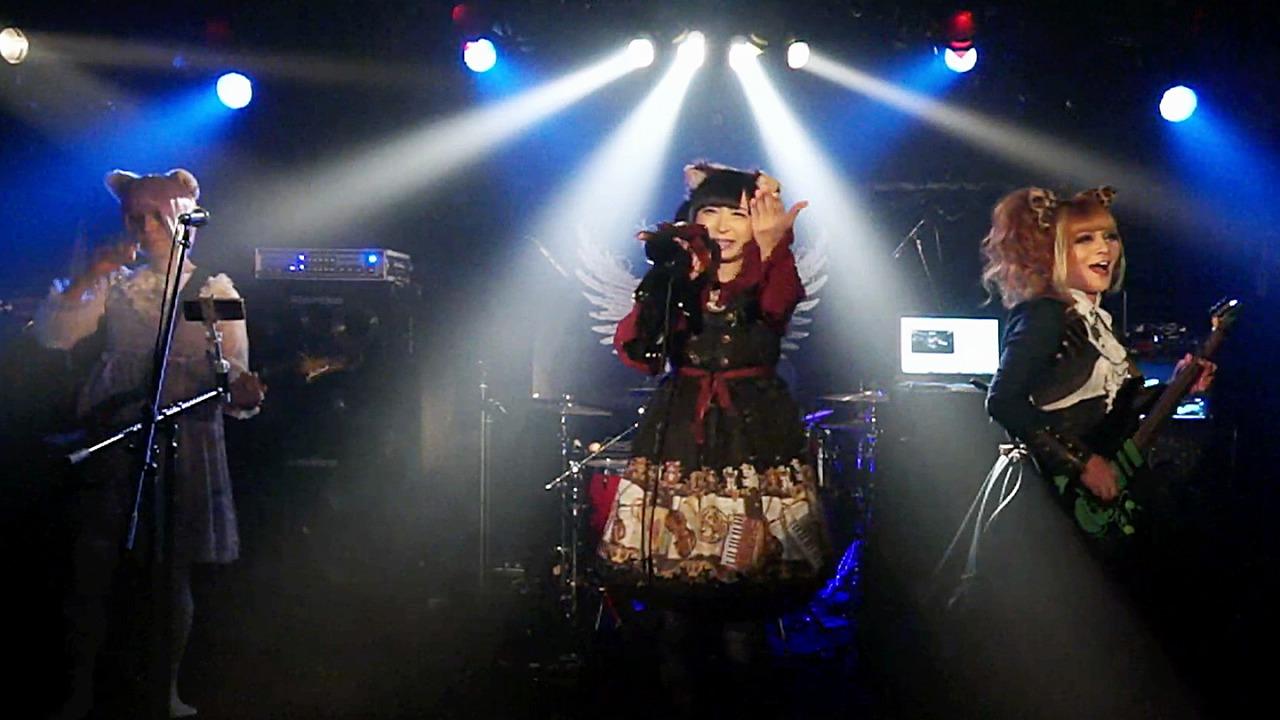 nekomimi_live02